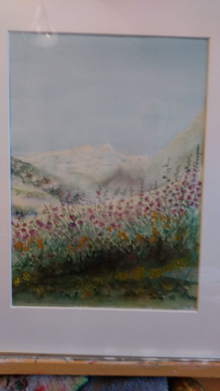 Landschap Alpen bij Termignon 1