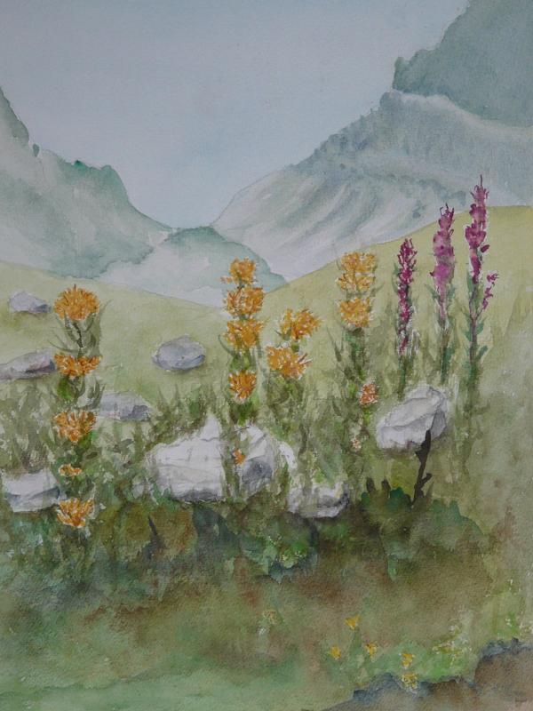 Landschap Alpen bij Termignon 2