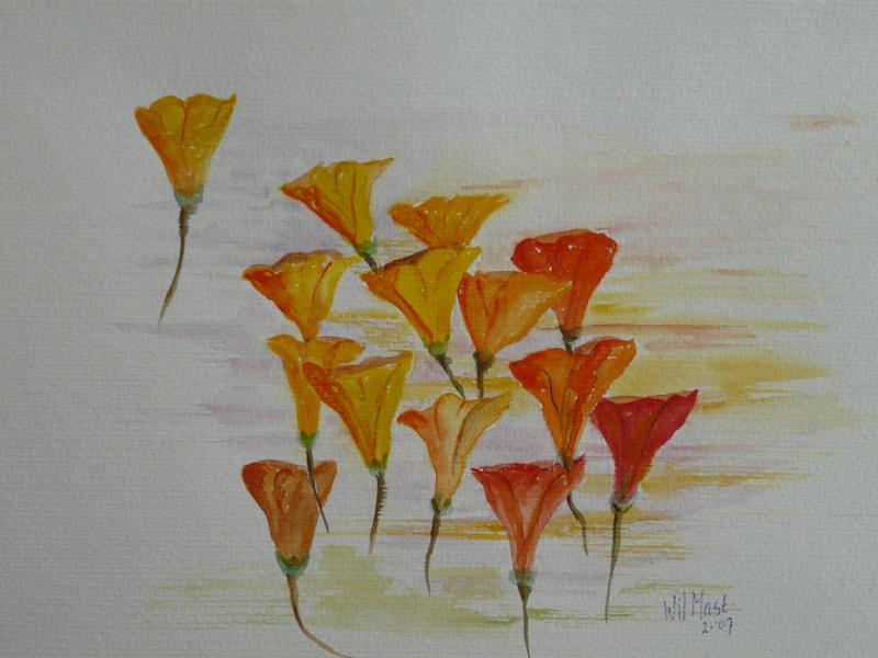 Oranje tuitblomen